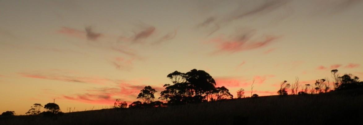 Tasmania at dusk